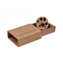 Lynx paw magnet and box
